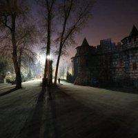 Ночью в парке :: Марат Макс