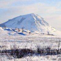 Зима белесой пеленой Застлала все по кругу... :: Евгений Юрков