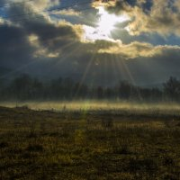 туман :: Сергей Шварчук