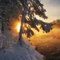 Морозного тумана зачерпну из золотой реки... :: Евгений Плетнев