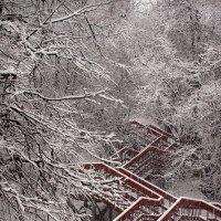 Снегопад в Коломенском.... :: Андрей Войцехов