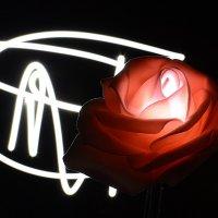 Светящиеся розы :: Валери Ко