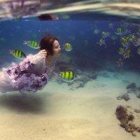 Hello fish. :: Дмитрий Лаудин