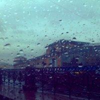 Осень.Дождь в Питере :: Мария Попова