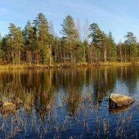 Финское озеро :: Anna Stoliarova