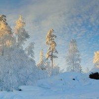 Уральская зима :: vladimir