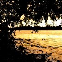 Золотой закат :: Ananasik XI