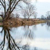 Окрестности озера Орешек :: Виталий Качанов