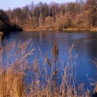 Усадебный пруд :: anna borisova