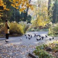 Осень в Киеве..... :: Носов Юрий