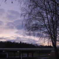 Фиолетовый пейзаж :: Антон Аржаник