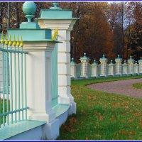 Изгородь :: Владимир Гилясев