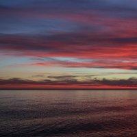 Вечером на море :: Виолетта