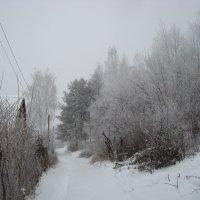 Зима :: Андрей Тер-Саркисов