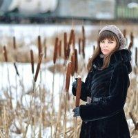 Рогоз :: Женя Рыжов