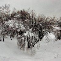 +++ :: Александр Шурпаков
