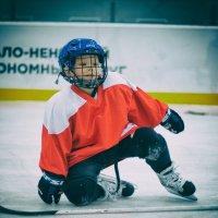 маленький хоккеист) :: Анастасия Конаныхина