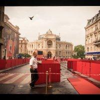 Международный кинофестиваль :: Виталий Любицкий