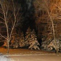 Зима в свете фонарей :: Александр Бурилов