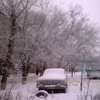 зимний двор :: МИХАИЛ КАТАРЖИН