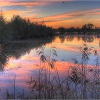 Весенний закат на озере :: Nikita Volkov