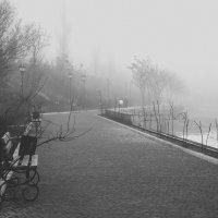 Туманная набережная :: Игорь Стародубец