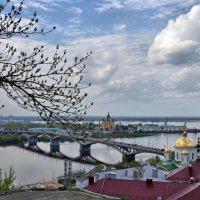Прогулка по городу :: Олег Кашаев