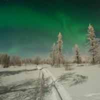Полярное сияние в Новом Уренгое :: Kamil Nureev