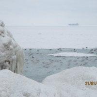 Одесса зимой :: Маруся