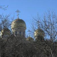 Купола храма г.Кисловодск. :: Николай Малявко