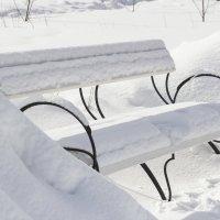 Свежий снег :: Евгений Мельников