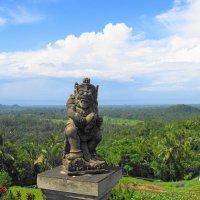 Балийские просторы :: svk