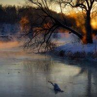 Закатное возгорание... :: Андрей Войцехов