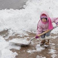 Уборка снега :: Petr Shostak