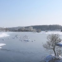 Река Кокша зимой. :: Олег Афанасьевич Сергеев