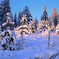 зимний пейзаж :: Александр Преображенский