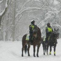 Утром в сильный снегопад вдруг полиции наряд! :: Юрий Поляков