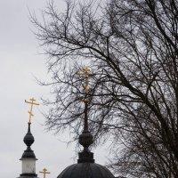 Свято-Никольский Черноостровский женский монастырь :: Ирина