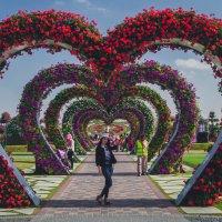 Miracle Garden :: Ильмар Мансуров
