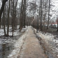 Там на неведомых дорожках :: Владимир Прокофьев