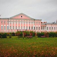 Усадьба Толстых. :: Наталья Цветкова