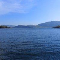 Как я училась плавать :: Евгения Латунская
