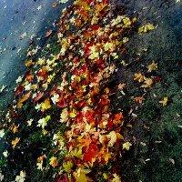 Опавшая листва... :: Павел Зюзин