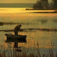 ..сказ о рыбаке...... :: Галина Юняева