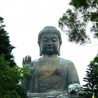 Большой Будда. :: Полина Polli