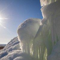 зима :: Анна Станкевич