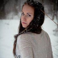 Зимняя леди :: Anna Barsukova