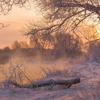 Морозное утро... :: Леся Вишня