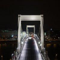 мост :: Илья Капля