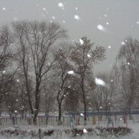 хмурый зимний день.... :: Наталья Меркулова